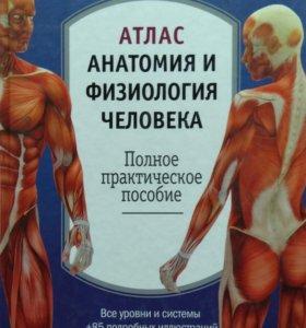 Атласы анатомии человека