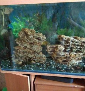 Аквариум 170 л с рыбами и фильтром