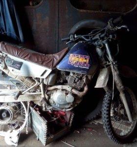 Продам мото Suzuki Djebel 200