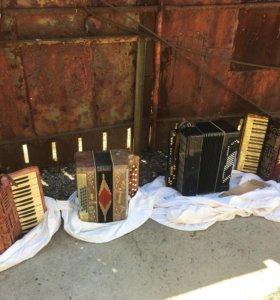 Два баяна и два аккордиона