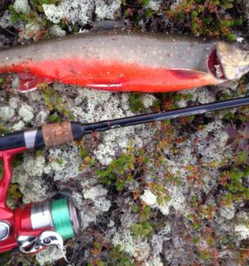 Рыбалка на Кольском, кумжа, хариус