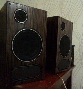 Редкая акустика электроника 25 ас 128