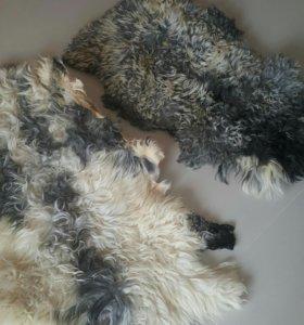 2 шкурки овчины длинный ворс