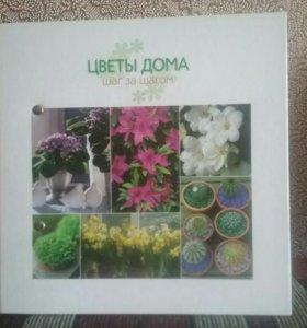 2 книги о комнатных растениях