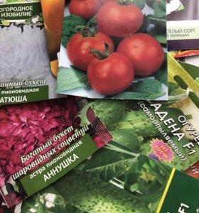 Рассада овощей и цветов, семенной картофель