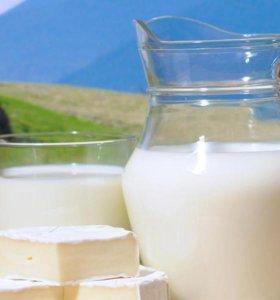 Самое вкусное козье молоко