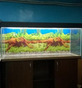 Новый аквакомплекс 250 литров
