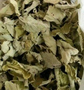 Чай Мята сушеная листья, лесной малины