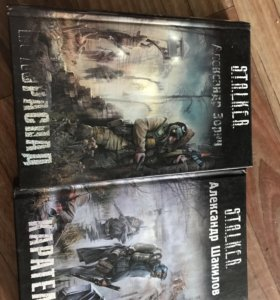 Книги из серии сталкер. Полураспад и каратели