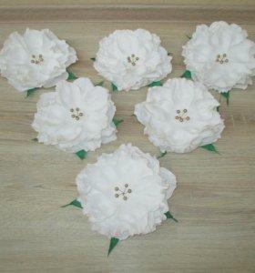 Большие цветы для интерьера
