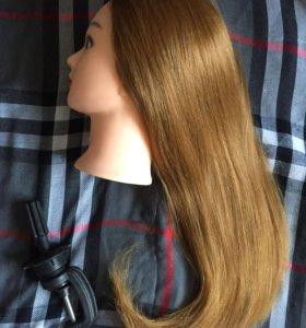 Тренировочный манекен с натуральными волосами