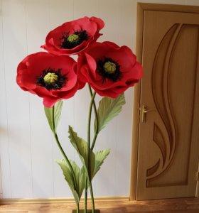 Интерьерные цветы, большие цветы
