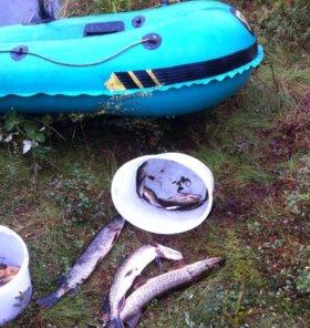 Лодка надувная Нырок