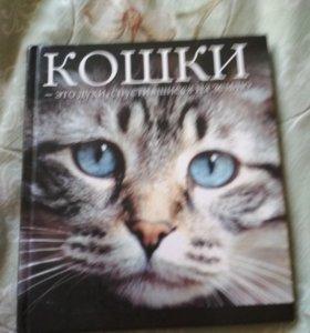Книжка Кошки