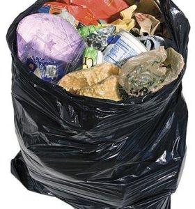 Готов каждый день по утрам выносить ваш мусор 250