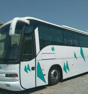 Перевозки пассажиров от 10 до 56 мест