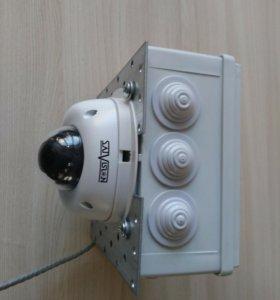 SVID443F28