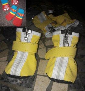 Ботинки для собаки, носочки в подарок)