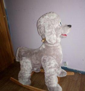 Собака каталка