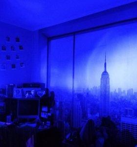 Продам светодиодные лампочки 2шт. (синий свет) 💡