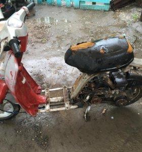 Скутер Honda eve