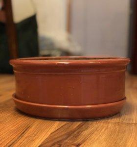 Низкий керамический горшок для цветов