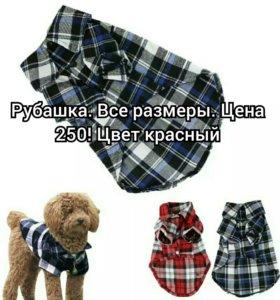 Рубашка для собак и кошек