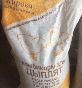 Комбикорма для цыплят ПК 5-3
