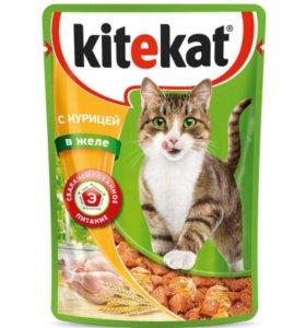 Корм для кошек Kitekat (Китикет) в ассортименте