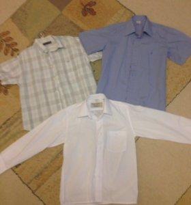 Рубашки, футболки и шорты на 122-134