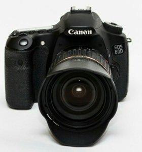 Canon 60D + Tamron 17-50 F2.8