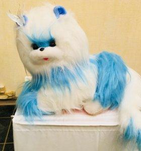 Кошечка 😍(новая)