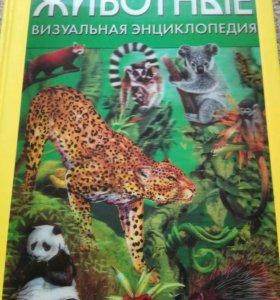 Визуальная энциклопедия
