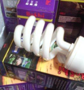лампы для черепах опт