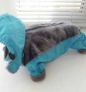Одежда для собак мелких пород. Новая.