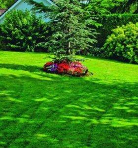 Покос травы,спил деревьев