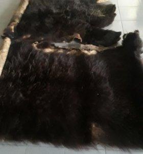 Медвежьи шкуры (изменил описание)