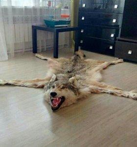 Ковёр волк