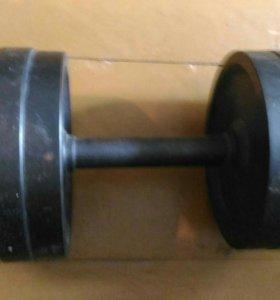 Гантеля разборная 21 кг