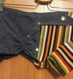 Костюм (джинсы+свитер) для собак