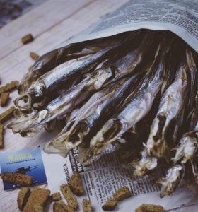 Корюшка вяленая с нижнего Амура , доставка