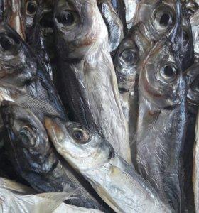 Доставка морепродуктов по Севастополю
