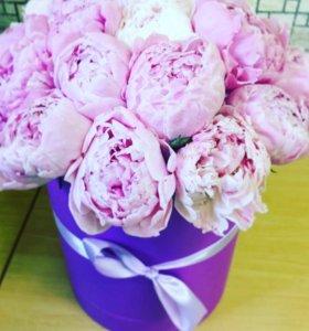 Пионы цветы спб