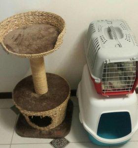 Когтеточка, переноска и туалет для кошек