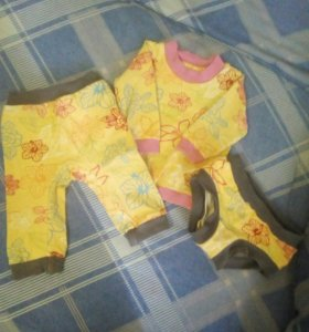 Свитшот штаны и трусик хипстор