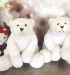 Медведи умка