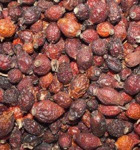 Сушёные плоды шиповника