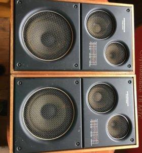 Акустическая система «Электроника 25АС-126»