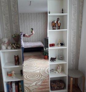Стеллажи и мебельный шкаф.