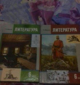 Литература. 6 класс. 1 и 2 часть